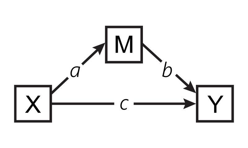med-model